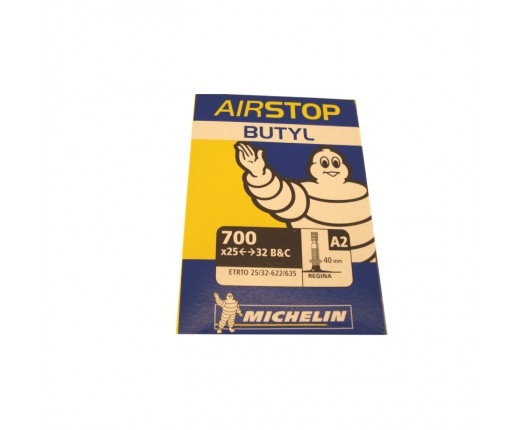 Camera d'aria Michelin A2 25-32 622-635